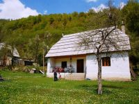 Cooperation, Institutions and UN Agencies.  A rural project in Albania.